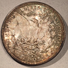 1884 O  Morgan Dollar, MS62