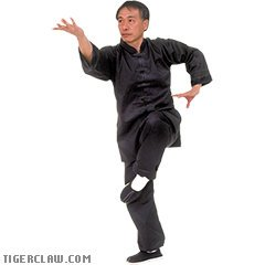 BLACK KUNG FU UNIFORM