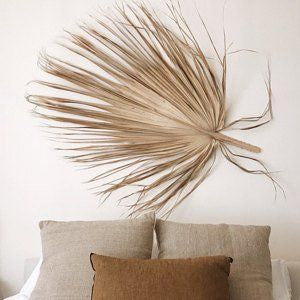 Creative Co-op Giant Dried Palm Fan Leaf-Natural