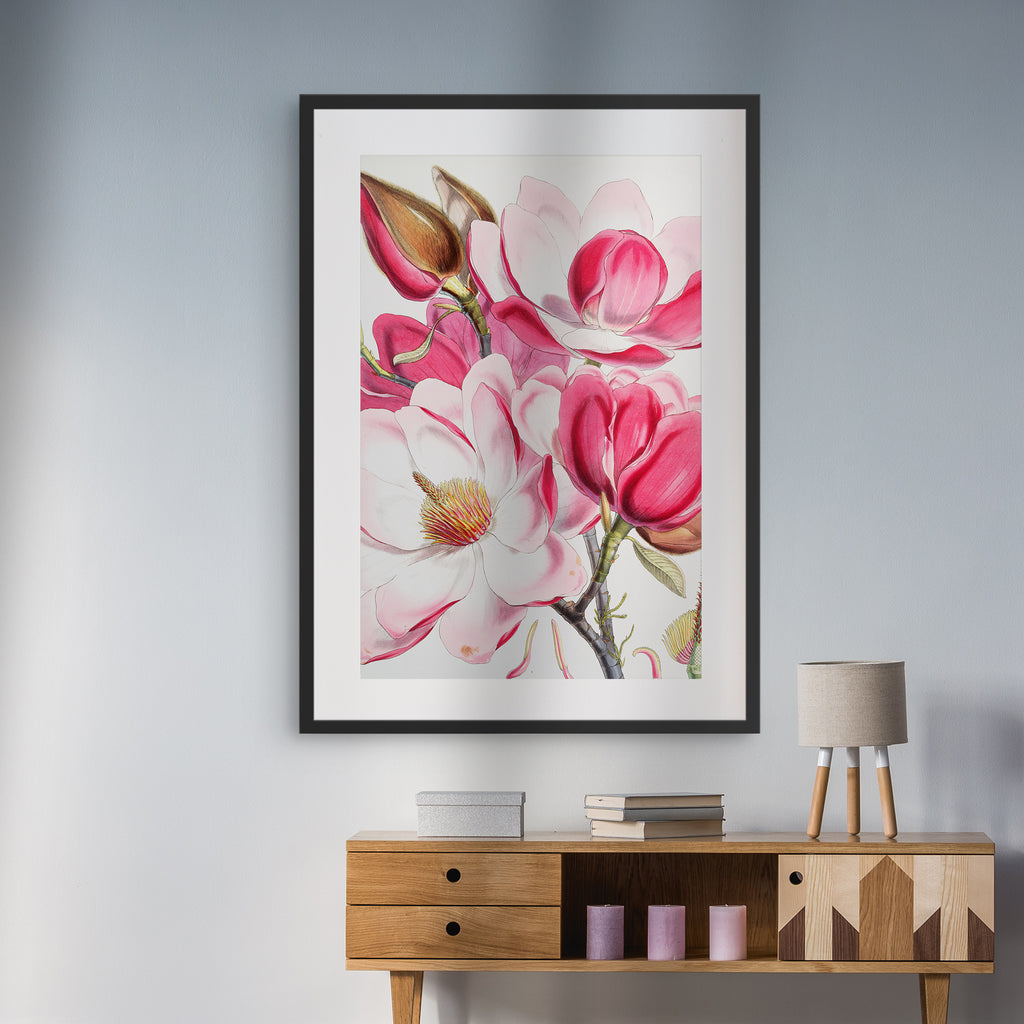Floral A Campbell's Magnolia by WH Fitch - medinatart