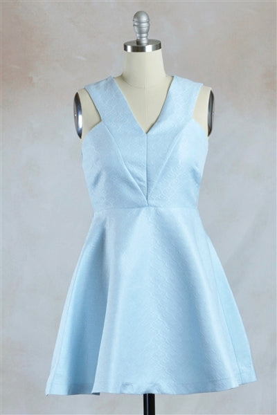 Sleeveless Jacquard Fit and Flare Mini Dress in Powder Blue