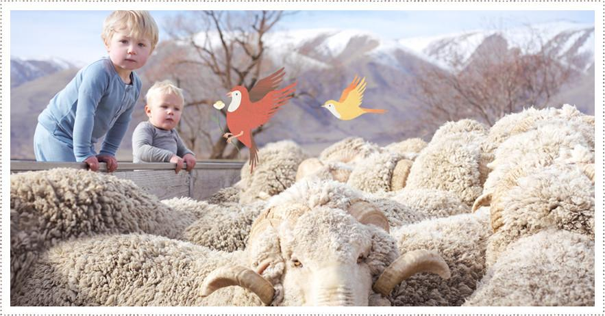 New Zealand Merino baby clothes is world's best baby clothes