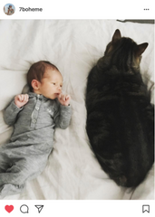baby wearing jumpsuit beside a cat