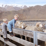 merino wool regulates temperature and feels better than any other wool. Perfect baby wool