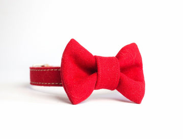 ECORed and Bowtie