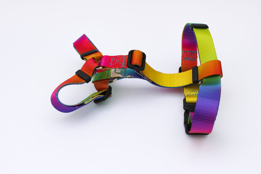Woodstock Harness