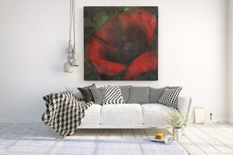 Poppy - Original Canvas Print