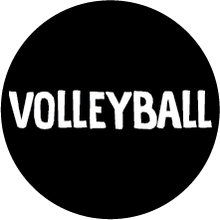 Load image into Gallery viewer, Volleyball Colored Round Decal (F)