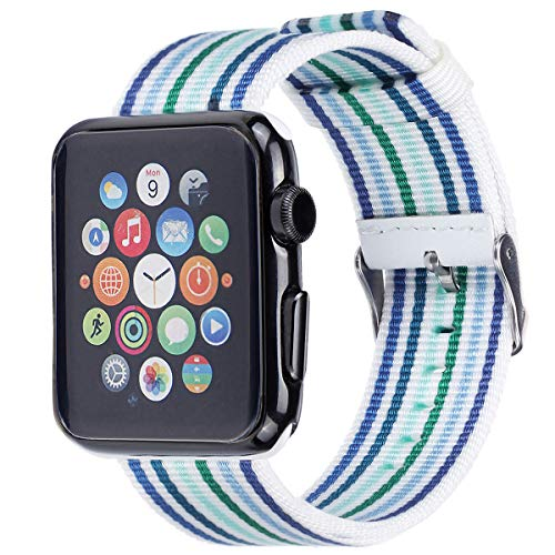 Apple Watch Band - Nylon Stripe - Compatible with Series 4 3 2 1 (Thin Blue and Green)