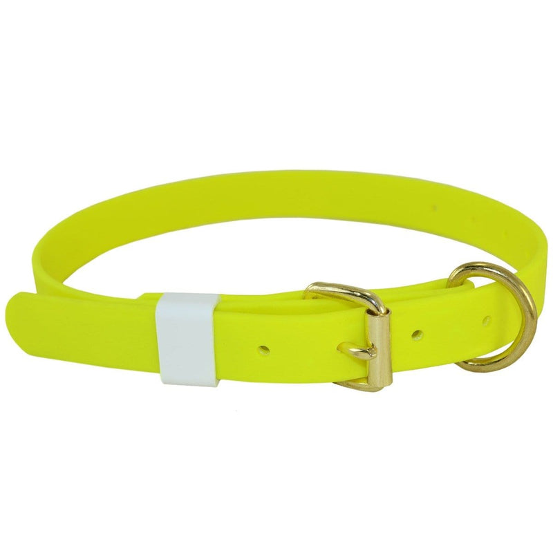 "Biothane 1"" Single Layer Collar 14""-24"""