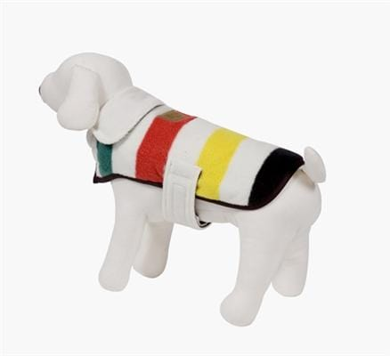 Glaceir National Park Dog Coat - Bayside Buddy
