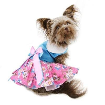 Pink and Blue Plumeria Floral Dress with Matching Leash - Bayside Buddy