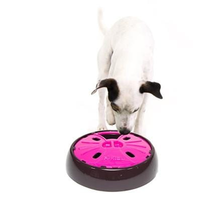AiKiou Junior Slow Down Bowl for Dogs- - Bayside Buddy