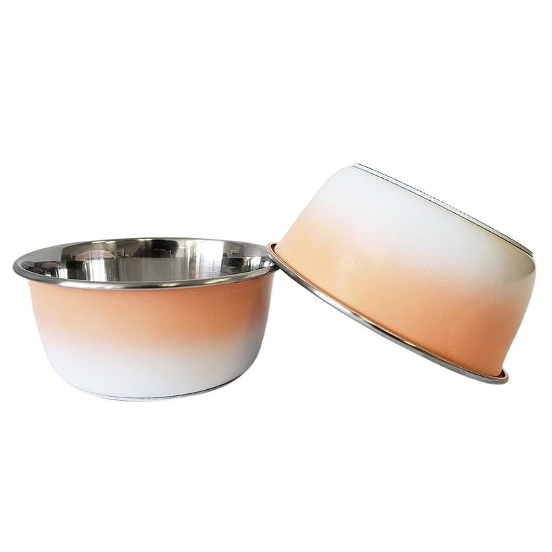 Ombre Coral Stainless Steel Dog Bowl