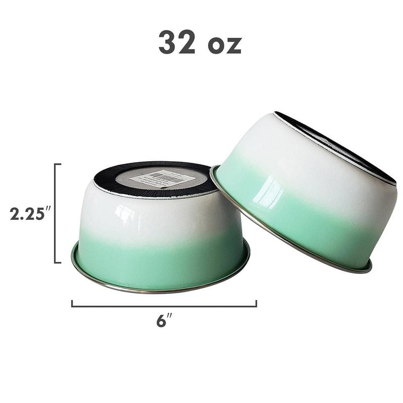 Ombre Mint Stainless Steel Dog Bowl