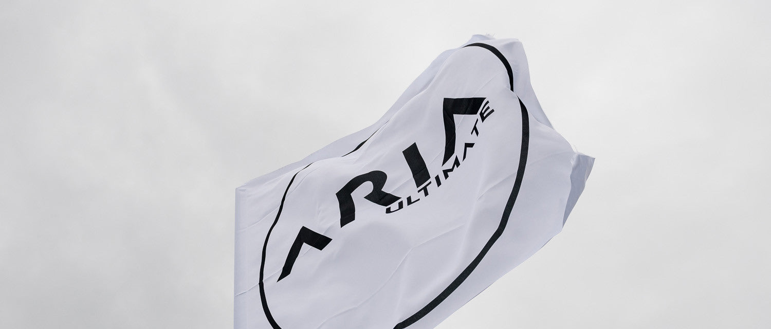 The ARIA Ultimate flag, blowing in the (heavy) wind.