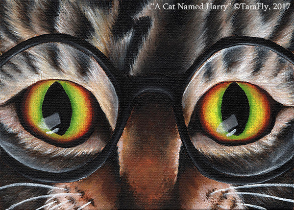Harry Cat Wizard wearing glasses original painting