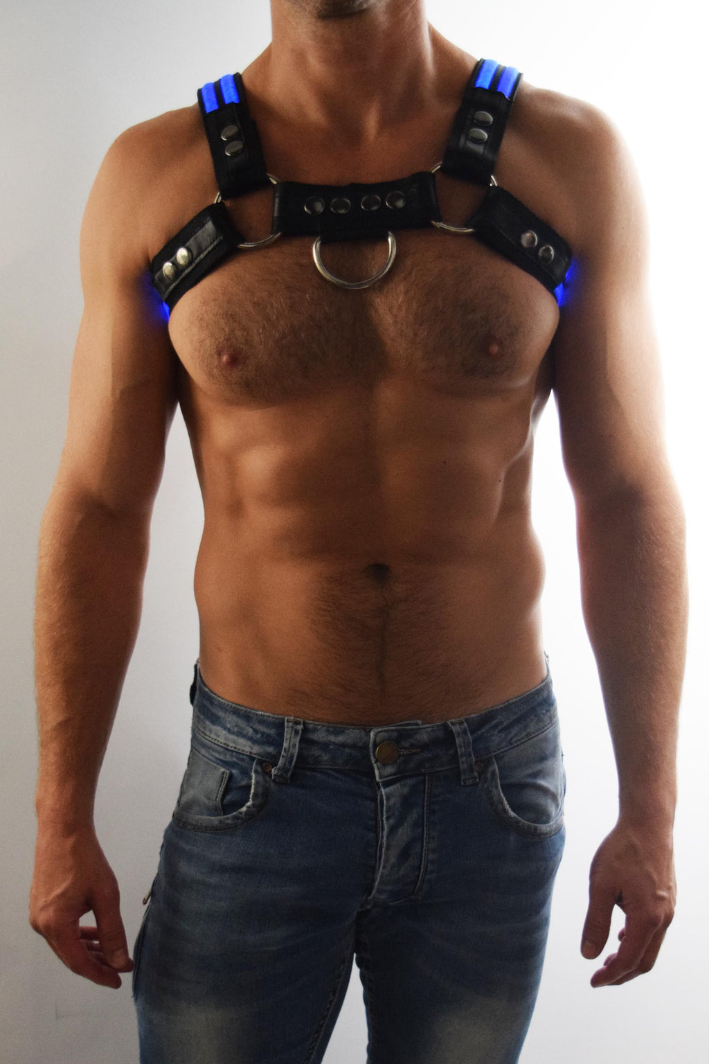 BLUE GLOW BULLDOG HARNESS