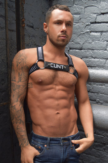 TWINK HAZARD CIRCUIT HARNESS - CUNT