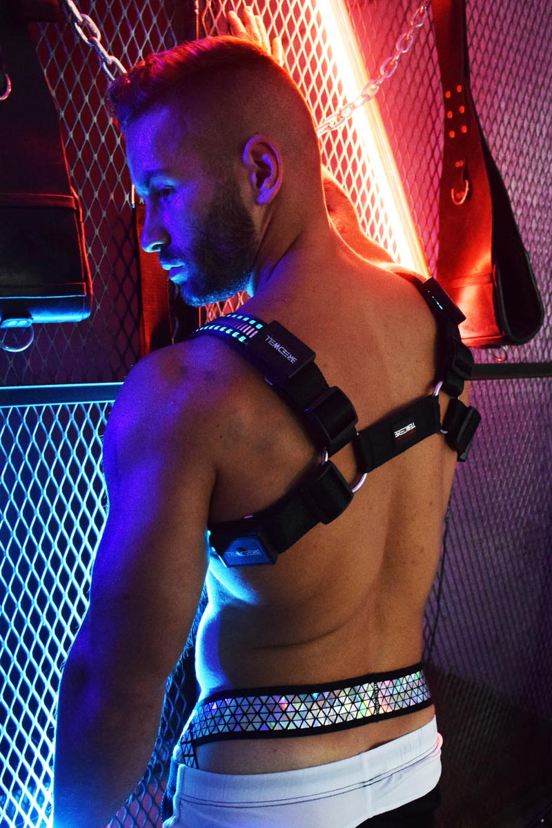 MIRROR GLOW BULLDOG HARNESS