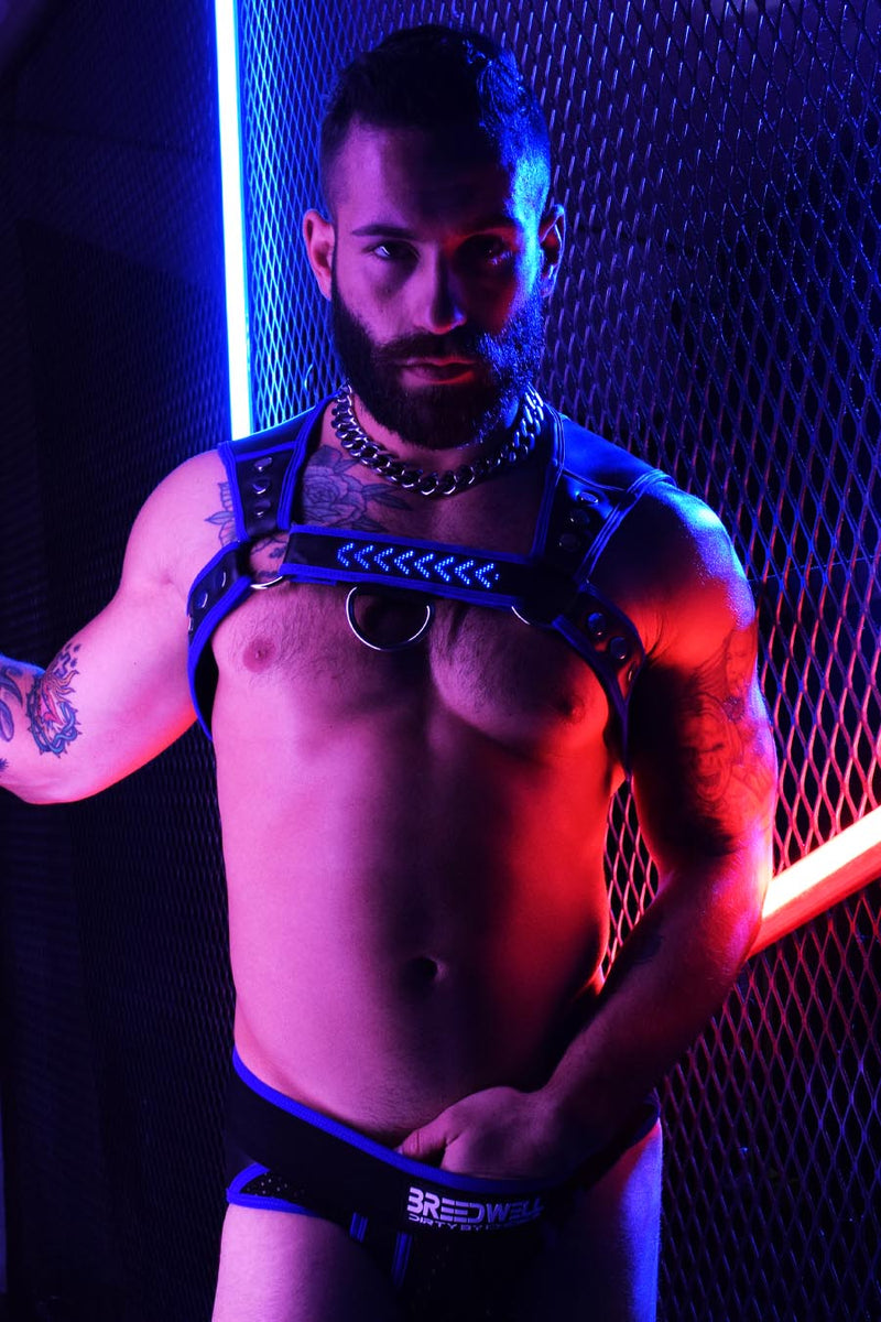 NEOGEAR MARQUEE HARNESS - BLUE