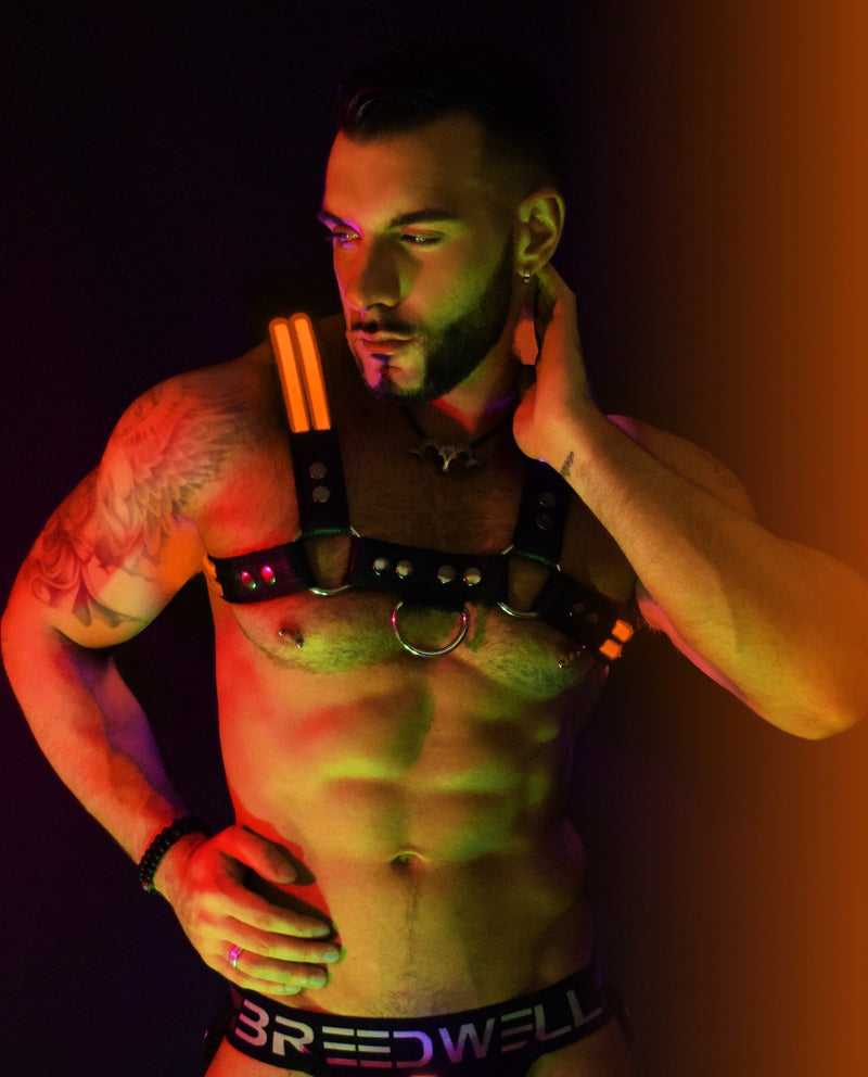 ORANGE GLOW BULLDOG HARNESS