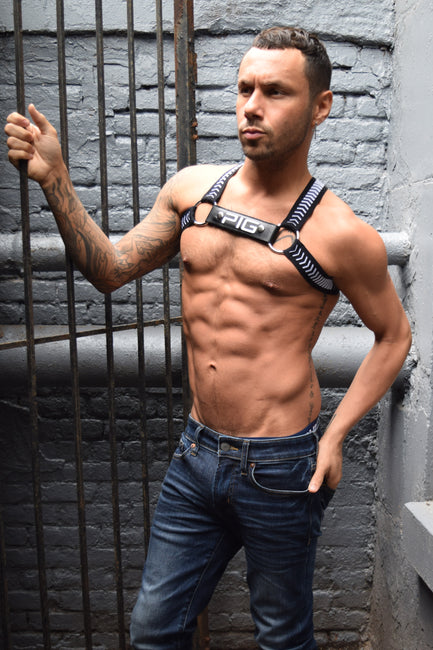 TWINK HAZARD CIRCUIT HARNESS - PIG