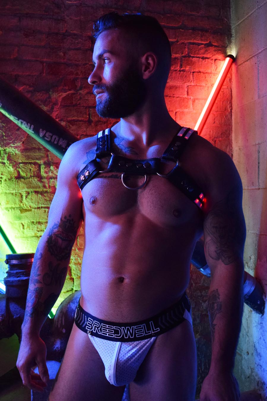 RAVE BULLDOG HARNESS