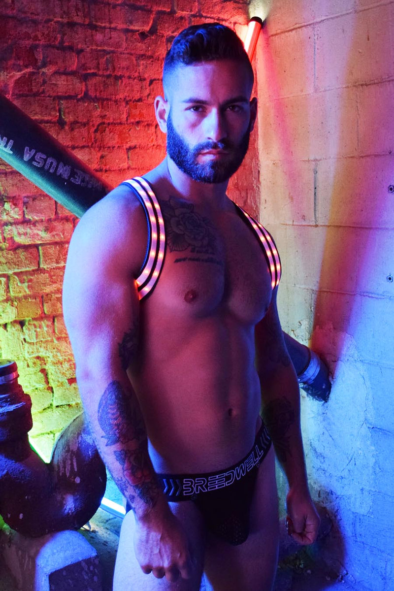 RAVE SHOULDER HARNESS