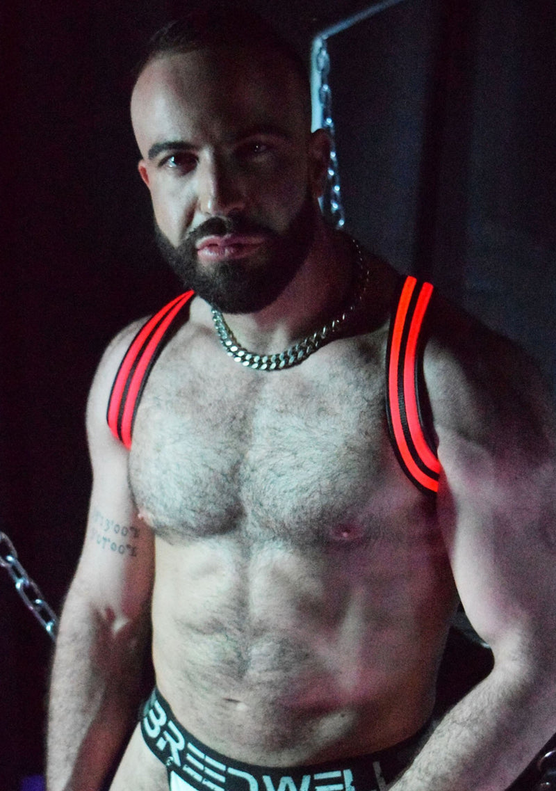 RED GLOW SHOULDER HARNESS