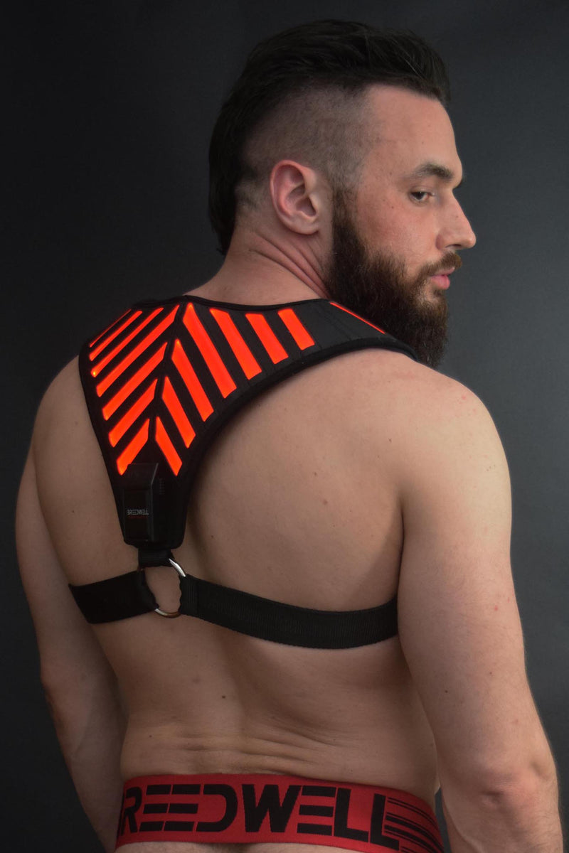 RED WARRIOR HARNESS
