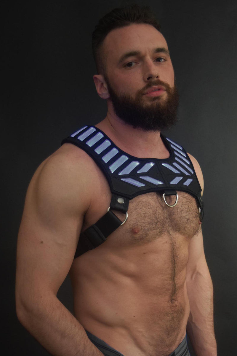 PURPLE WARRIOR HARNESS