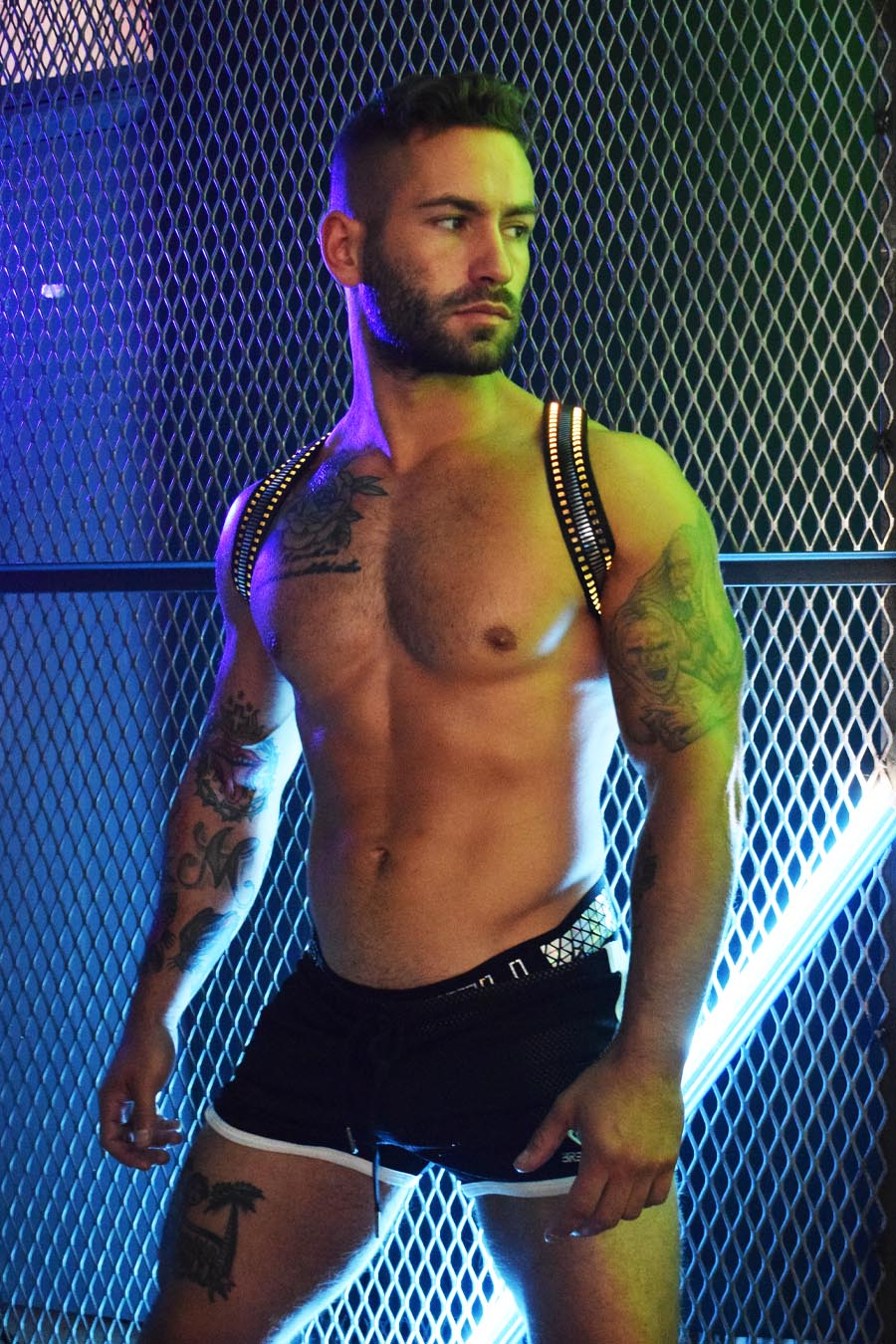 MIRROR GLOW SHOULDER HARNESS