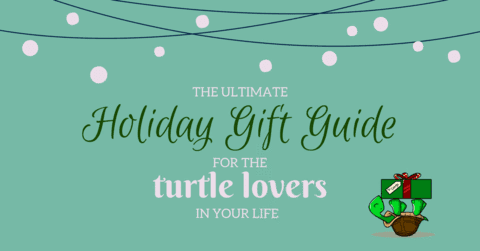 The Ultimate Holiday Gift Guide For The Turtle Lovers In Your Life