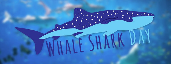 International Whale Shark Day 2018