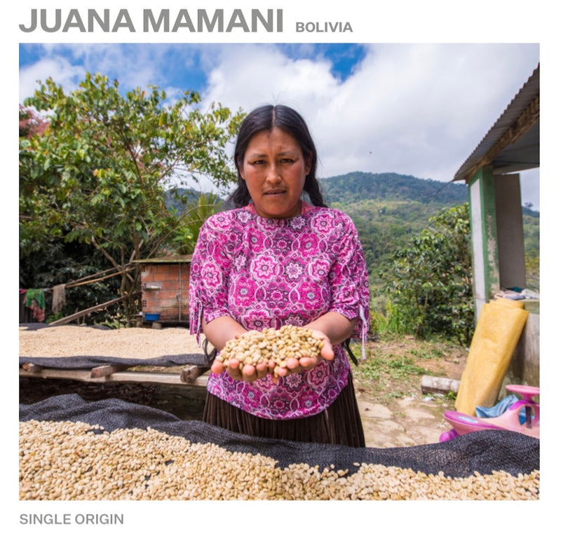 Single Origin - Juana Mamani Bolivia