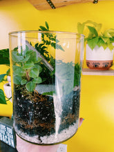 Load image into Gallery viewer, Terrarium Class 3/12 @ The Plant Shack - VintageChameleon