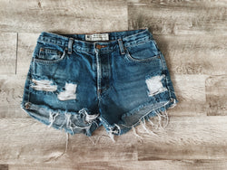 Plain Jane Shorts - VintageChameleon