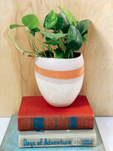 Load image into Gallery viewer, Bethany Oval Pot - VintageChameleon