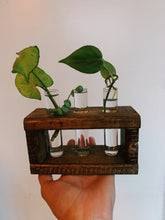 Load image into Gallery viewer, Propagation Station - VintageChameleon