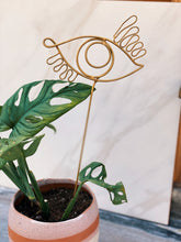 Load image into Gallery viewer, Wide Eye Plant Stake - VintageChameleon