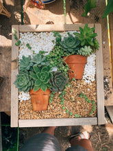 Load image into Gallery viewer, Succulent Box Planter 8/16 @The Plant Shack
