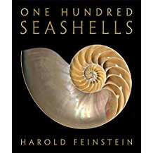 One Hundred Seashells Harold Feinstein