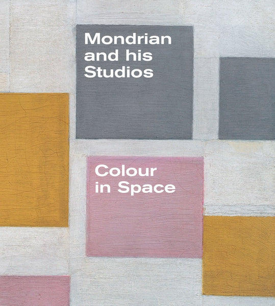 Mondrian and his Studios - Colour in Space