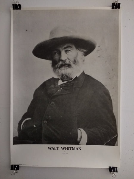 Walt Whitman By Mathew Brady (Poster)