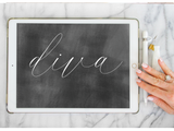 Procreate Brush: Diva-wedding invitation font-Ink Me This