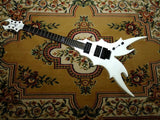 Custom Designed FV with Floyd Rose and Ebony Fingerboard