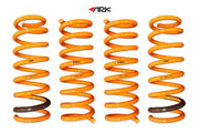 Ark Performance Hyundai Genesis Sedan  GT-F Lowering Springs (2015+)