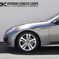 Ark Performance Hyundai Genesis Coupe 2.0T / 3.8L GT-S Lowering Springs (2010-2016)