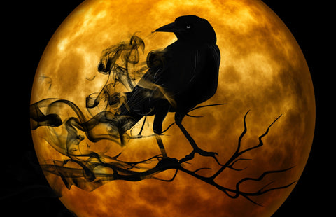 silhouette of a black crow against the golden moon